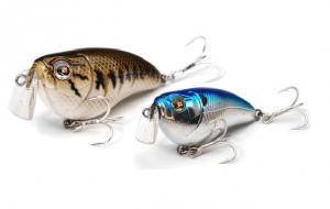 Tips voor het vissen op snoekbaars in de zomer